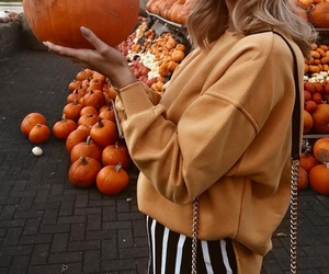 chain purse, striped pants, and pumpkins image