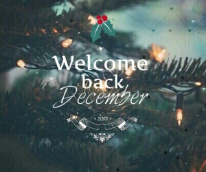 christmas, welcome back, and december image