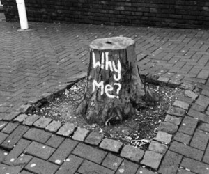 why me, nature, and tree image