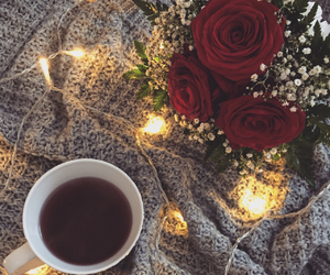 art, roses, and december image