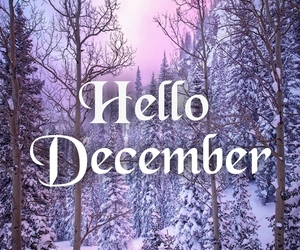 christmas, december, and hello december image