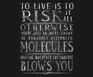 quotes, rick, and risk image