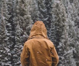nature, woods, and photoshoot image