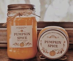 autumn, yammi, and pumpkin image