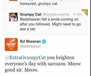 grumpy cat and ed sheeran image