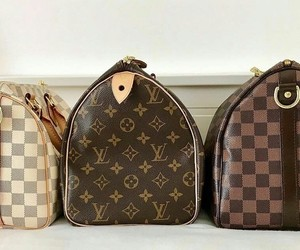 bags, handbag, and Louis Vuitton image