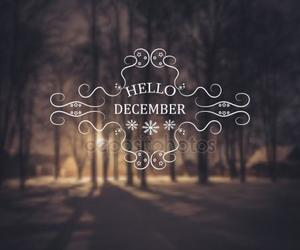 christmas, love, and december image