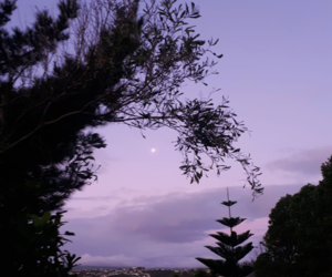 aesthetic, lilac, and moon image