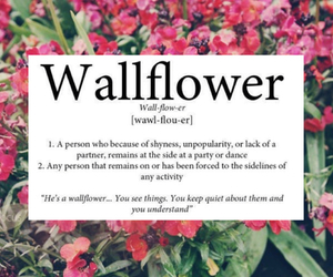 wallflower and quotes image