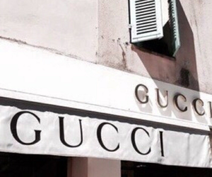 aesthetic, gucci, and luxury image