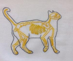 cat, yellow, and art image