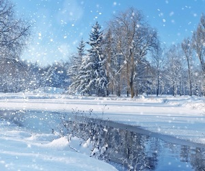 blue, white, and frost image