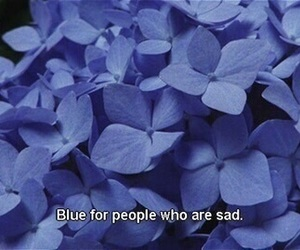 blue, sad, and flowers image
