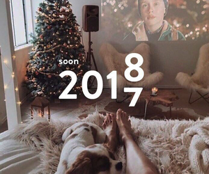 bed, dog, and newyear image