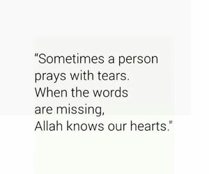 islamic and quotes image