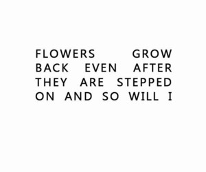 quotes, flowers, and purple image