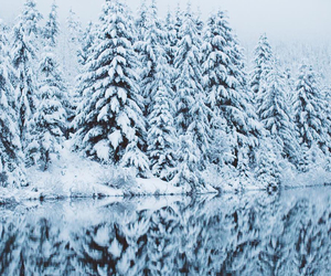 heart, snow, and trees image
