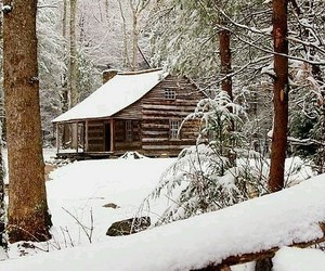 art, cabin, and nature image