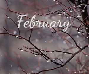 february and winter image