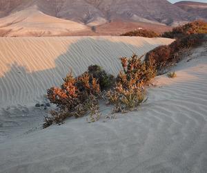 desert, sand, and aesthetic image