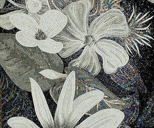 background, black, and florals image