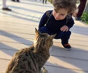 baby, cat, and hair image