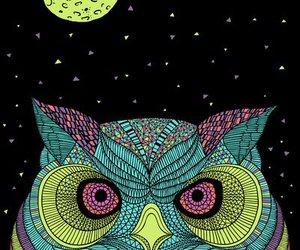 owl, moon, and art image