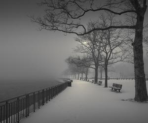 gray, grey, and night image
