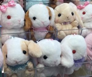 bunny, cute, and kawaii image