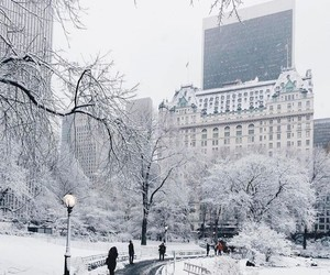 snow, winter, and places image