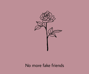 friends, fake, and pink image