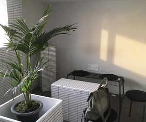 aesthetic, plants, and interior image