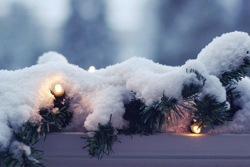 christmas, whithecollectors, and cozy image