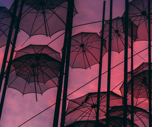 umbrella, pink, and wallpaper image