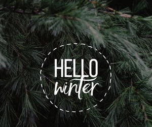christmas, goals, and green image