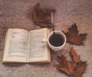 autumn, morning, and book image