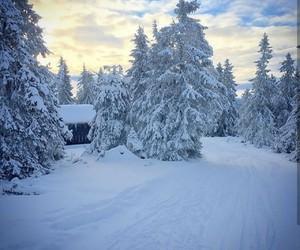 amazing, snow, and white image