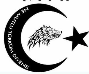 turan türkiye image