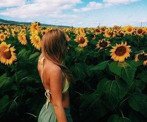 beautiful, field, and girl image