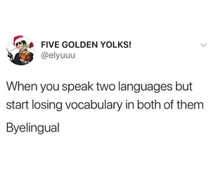 bilingual, culture, and funny image