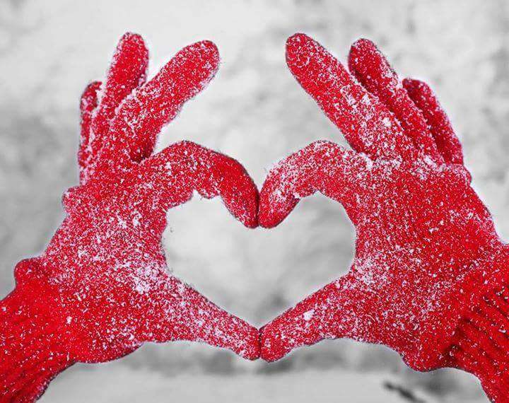 winter, heart, and snow image