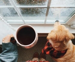 coffee, dog, and winter image
