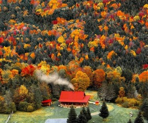 fall, house, and autumn image