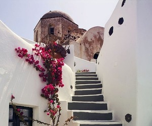 flowers, Greece, and summer image