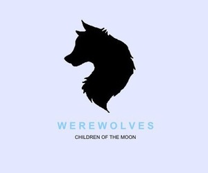 werewolves, shadowhunters, and books image