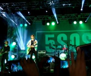 ashton, brazil, and green image