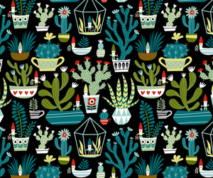 background, cacti, and pot image