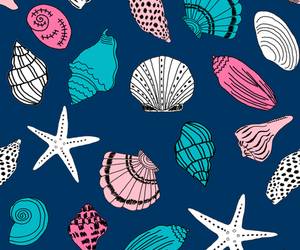 background, pattern, and seashell image