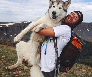 dog, dogs, and hiking image
