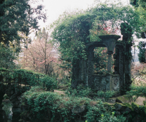 aesthetic, nature, and garden image